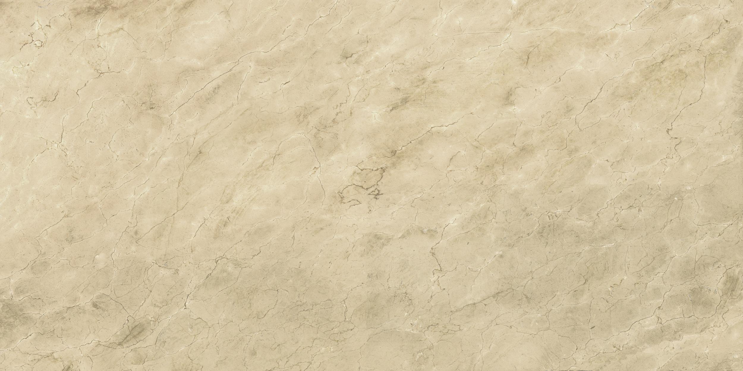 Artedomus Maximum Royal Marfil