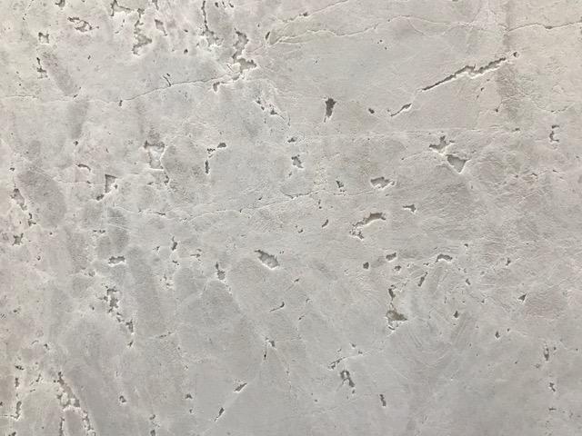Grigio Orsola Artedomus