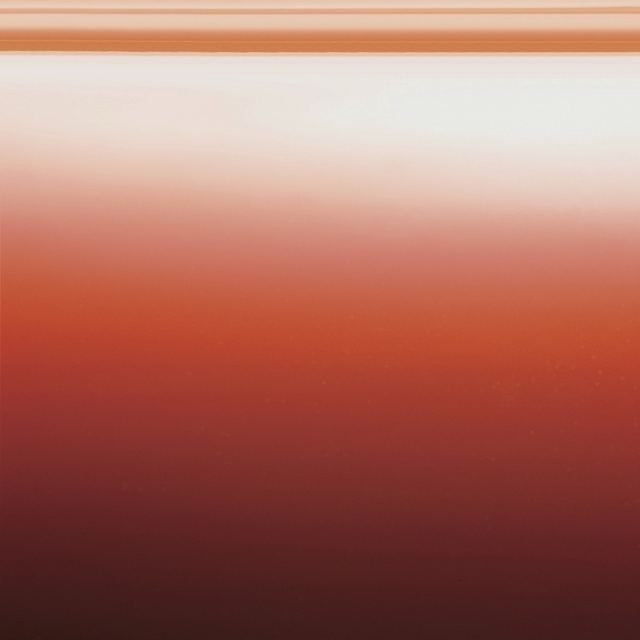 Agape Colour finish Glossy lacquered orange polyethylene.jpg